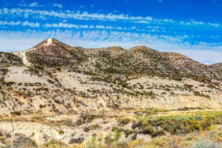 Monegros, un desierto con mucha vida