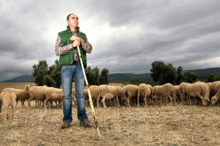 Sello IGP europeo | Alberto Riba | Ganadero de la IGP Ternasco de Aragón